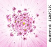 Pink Daisy Flower Buds And...