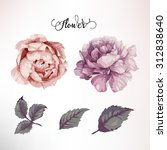 peonies and leaves  watercolor  ... | Shutterstock .eps vector #312838640