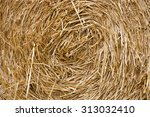 The Pattern  Texture Hay. A...