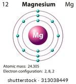 diagram representation of the... | Shutterstock .eps vector #313038449