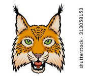 a lynx head logo. this is... | Shutterstock .eps vector #313058153