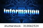 information  concept  the word... | Shutterstock . vector #313062524