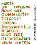 social media in the internet  ... | Shutterstock . vector #313084274
