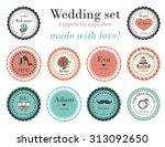 set of retro design elements... | Shutterstock .eps vector #313092650