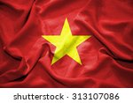 vietnam flag. illustration | Shutterstock . vector #313107086