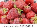 fresh strawberries closeup | Shutterstock . vector #313134119