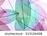multicolor decorative skeleton... | Shutterstock . vector #313136408