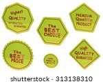 high quality set of sale... | Shutterstock . vector #313138310