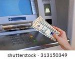 woman hand showing dollar... | Shutterstock . vector #313150349