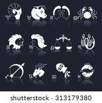 zodiac constellation astrology... | Shutterstock . vector #313179380