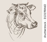 Cow Vector  Hand Draw Sketch