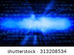 dark blue color light abstract... | Shutterstock . vector #313208534