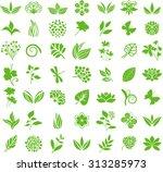 floral design elements | Shutterstock .eps vector #313285973