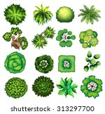top view of different kind of... | Shutterstock .eps vector #313297700