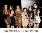 khloe kardashian  kylie jenner  ... | Shutterstock . vector #313319390