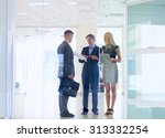 business woman standing with... | Shutterstock . vector #313332254