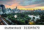 wonderful morning twilight... | Shutterstock . vector #313345670
