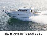 elegant motor boat sailing at... | Shutterstock . vector #313361816
