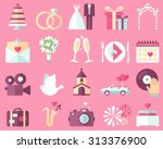 big vector collection of... | Shutterstock .eps vector #313376900