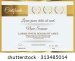 vector illustration of gold... | Shutterstock .eps vector #313485014