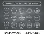 vintage monogram set on... | Shutterstock .eps vector #313497308