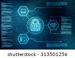 security concept  lock on... | Shutterstock . vector #313501256