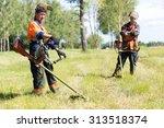 positive landscapers men... | Shutterstock . vector #313518374