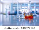 conical flask glassware with... | Shutterstock . vector #313522148