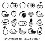 vector black and white fruits... | Shutterstock .eps vector #313534814