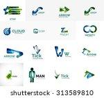 set of new universal company... | Shutterstock .eps vector #313589810