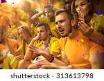 fun fans in stadium arena | Shutterstock . vector #313613798