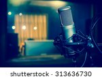 professional condenser studio... | Shutterstock . vector #313636730