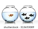 goldfishes different... | Shutterstock . vector #313653089