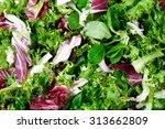 mixed salad leaves  frisee ... | Shutterstock . vector #313662809
