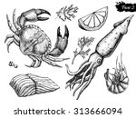 vector hand drawn seafood set.... | Shutterstock .eps vector #313666094