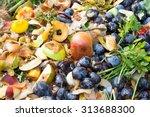 Compost Bin In The Garden....