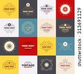 vintage frames  labels.... | Shutterstock .eps vector #313691129