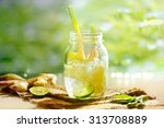 vibrant and colorful ginger... | Shutterstock . vector #313708889