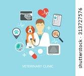 veterinary banner  background ... | Shutterstock .eps vector #313727576