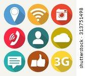 social network icon set. media... | Shutterstock .eps vector #313751498