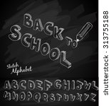 back to school background to... | Shutterstock .eps vector #313755188