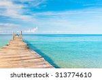 calm meditation contemplating... | Shutterstock . vector #313774610