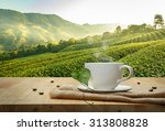 coffee cup with sackcloth on... | Shutterstock . vector #313808828