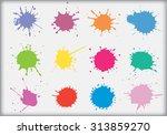 paint splat set.paint splashes... | Shutterstock .eps vector #313859270