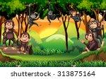 monkeys climbing tree in the...   Shutterstock .eps vector #313875164