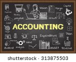 doodle about accounting on... | Shutterstock .eps vector #313875503