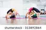 four girls practicing yoga ... | Shutterstock . vector #313892864