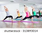 four girls practicing yoga ... | Shutterstock . vector #313893014