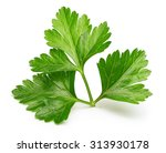 Parsley Herb Isolated On White...