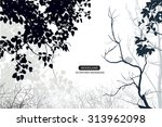 trees and branches silhouette... | Shutterstock .eps vector #313962098